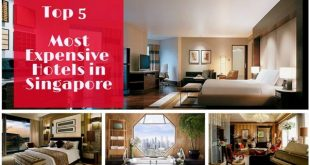 Top 5 Expensive and Luxurious Hotels in Singapore