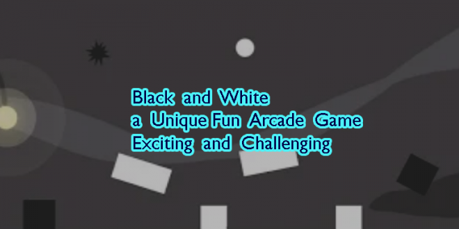 Black and White - a Unique Fun Arcade Game, Exciting and Challenging