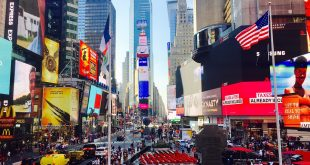 The New York City Guide