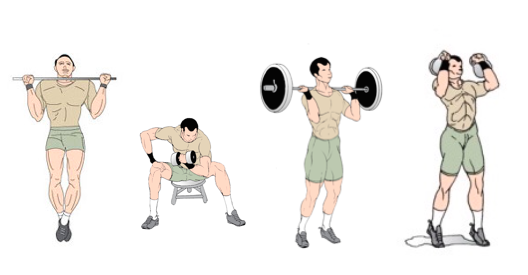 Best Muscle Mass Gaining Exercises