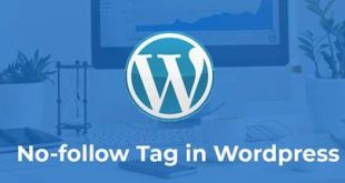 When and How to Use Nofollow Tag in WordPress