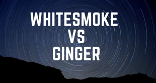 WhiteSmoke vs Ginger