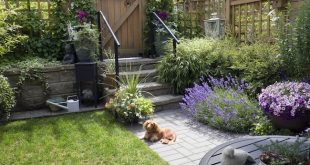 Maintain Your Landscaped Yard