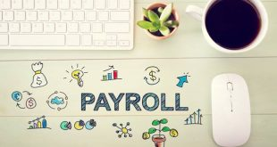 Understanding Employer Payroll Taxes