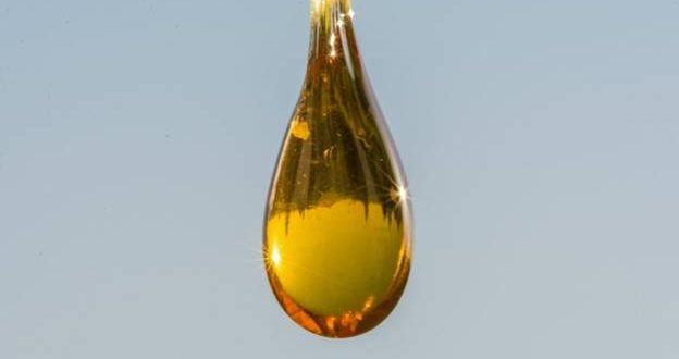 5 Things To Check Before You Buy Your CBD Oil