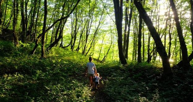 Ways to Spend More Time Outdoors