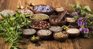 Natural Supplements For A Healthy Lifestyle