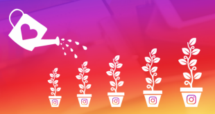 How to Get More Likes and Become Instagram Famous