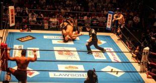 Wrestling Arenas